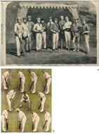 Picture of CRICKET: ILLUSTRATED LONDON NEWS.